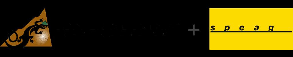 CMT + SPEAG Logo