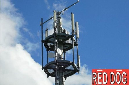 Tower and logo - Red Dog Radios