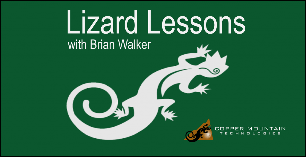 Lizard Lessons Logo Brian Walker V2
