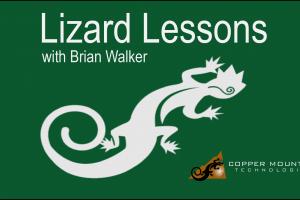 Lizard Lessons Logo Brian Walker V2