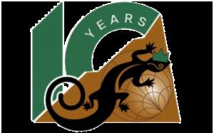 CMT 10-year logo